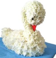Bouquet White swan