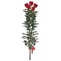 5 Red roses (90 cm)
