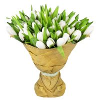 Bouquet 51 white tulips