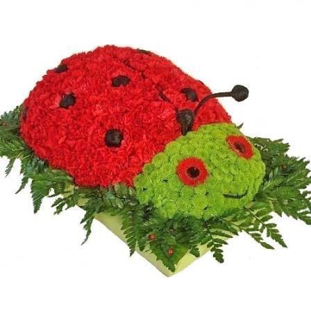 Bouquet Ladybird