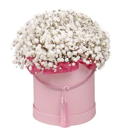 Bouquet Baby's breath in a box