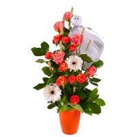 Bouquet Casper