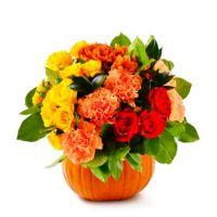 Bouquet Miss Pumpkin