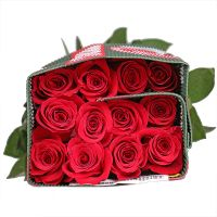 Wholesale Rose Freedom (Ecuador)