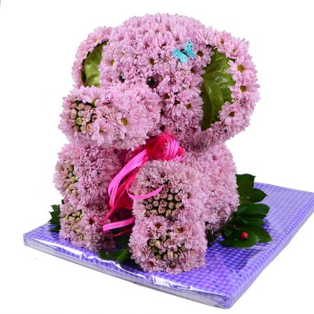 Bouquet Pink elephant