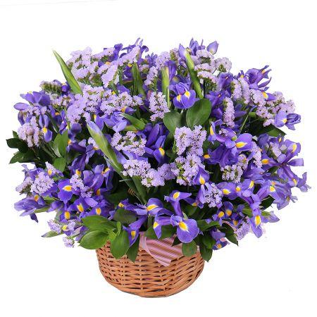 Bouquet Purple fog