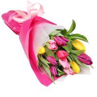 Spring calling 11 tulips