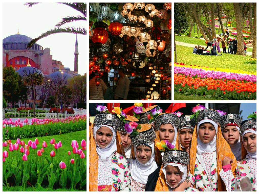 Flowers in Turkey