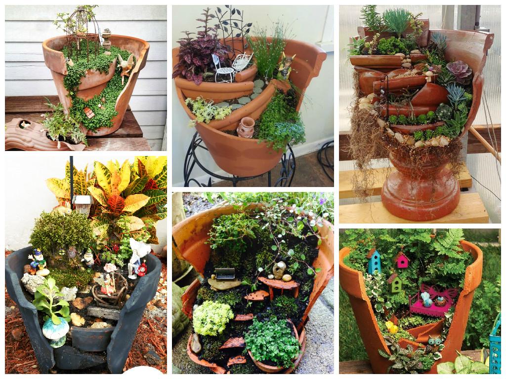 Garden in broken flower pot